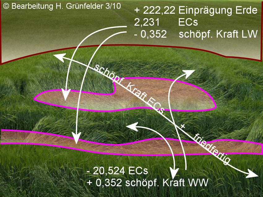 buchau-uebersicht-unbekannte_a.jpg